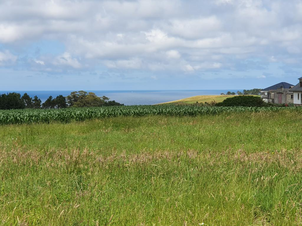 Plot for sale in Navia